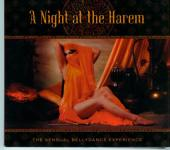 A night at the harem - a sensual bellydance experience